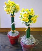 フラワー教室(中級)の生徒さん作品。水仙で作ったトピュアリーです。花器は、素焼き鉢を自由にペイントして頂いたものを使用しました。