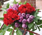 バラとチューリップを四角くまとめた花束です。配色がポイント。