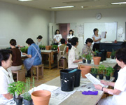 三郷市内の文化センターにて「ティーハーブの寄せ植え講座」の様子です。