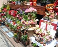 ラッピングした花が並ぶこの時期の移動販売は、いつもよりずっとカラフルです!