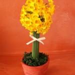 黄房水仙をトピュアリー仕立てに。春の香りいっぱい!