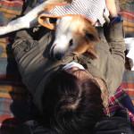 今年の春、公園で昼寝をする私とケンタ。