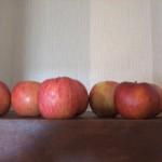りんごを沢山頂きましたが、食べきれないので・・・