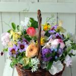 春の花かご。季節を存分に感じられる人気のスタイルです。