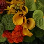 南国の花々は暑い夏によく似合います。