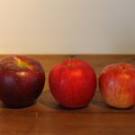 一番左が秋映。酸味も甘みも強く、美味しいです。