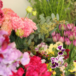 この季節ならではの可愛らしい花たち。