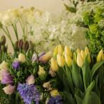 可愛い春の花がたくさん出てきました。