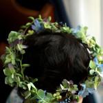 生後6か月のお祝いに生花で花冠を作りました。