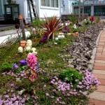 毎月メンテナンスに伺っているお庭も春真っ盛り。